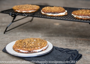 Gluten Free Oatmeal Cream Pie Cookies